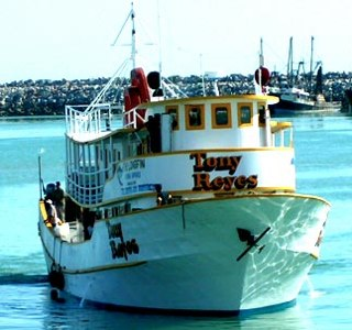 Trouble For The San Felipe Sports Fishing Industry